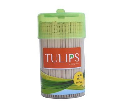 Tulip Wooden Toothpicks in a Jar - 250 Pcs