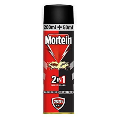 Mortein Dual All Insect Killer Spray 250ml